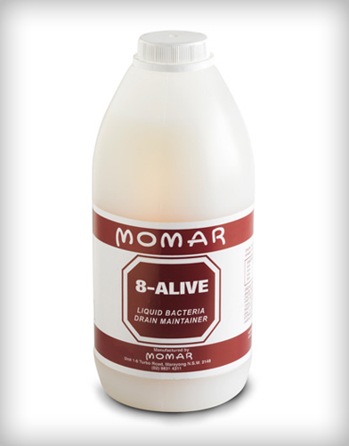 8-alive